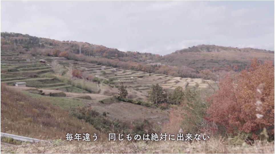 社員旅行2014「瀬戸内海・豊島篇」
