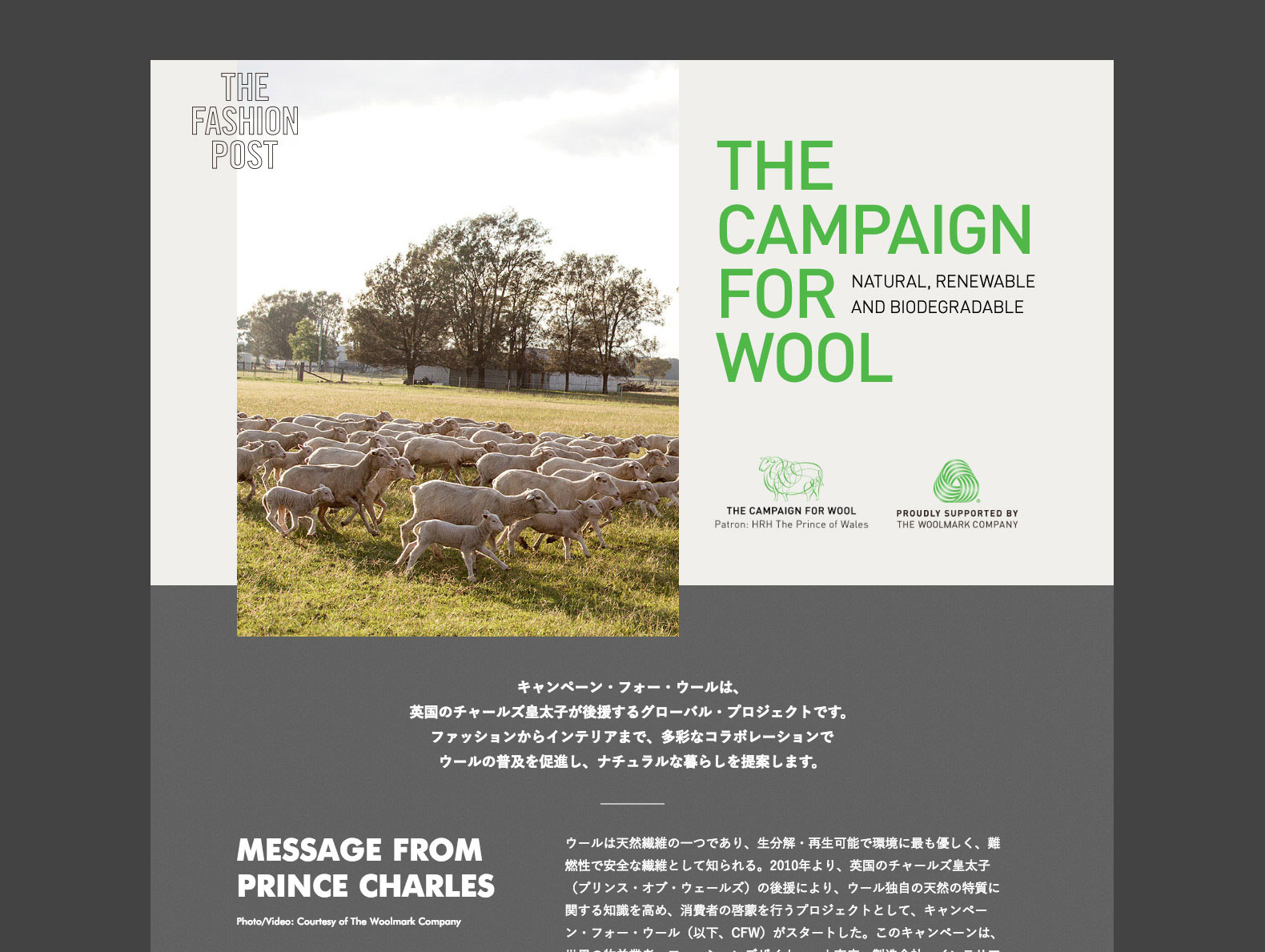 『THE CAMPAIGN FOR WOOL』