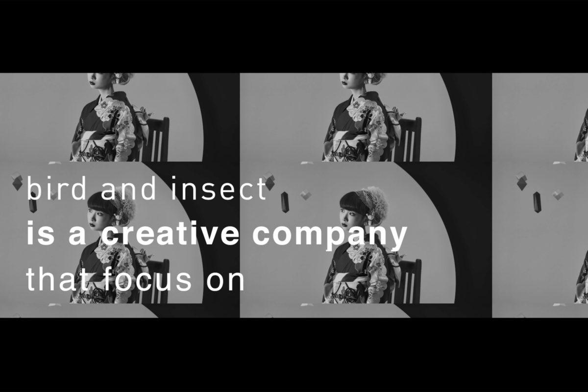株式会社bird and insect